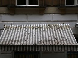 Building Walls And Awning Cleaning