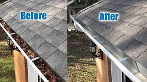 Professional Gutter Cleaning Near Me - St. Louis Area